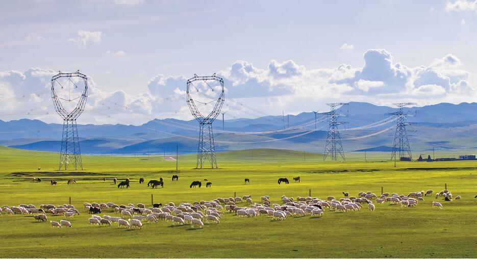 绿色电网赋能美好生活