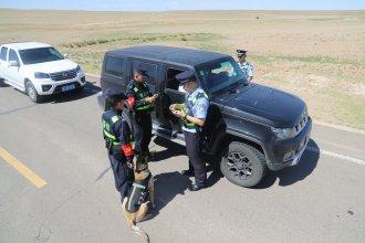 四子王边境管理大队警犬技术团队积极开展边境检查工作
